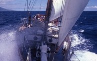 voyage to understanding
